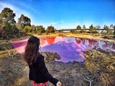 Pink lake in Westgate Park in melbourne Australia