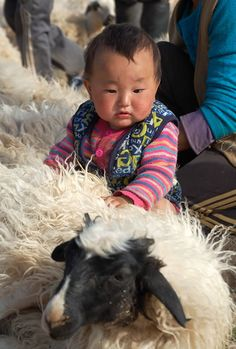 """A beautiful girl in Mongolia petting a sheep before it is about to be sheared. From """"Travel in Mongolia with Nomads."""""""