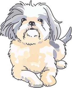 Illustration of A cute shih tzu is a wonderful addition to any dog lover's project. vector art, clipart and stock vectors. Dark Drawings, Cartoon Drawings, Animal Drawings, Shorkie Dogs, Havanese, Animal Templates, Puppy Drawing, Dog Quilts, Shih Tzu Dog