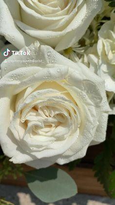 Funeral Poems, Casket Sprays, Sympathy Flowers, Flower Cupcakes, Flower Backdrop, Flower Crown, Wedding Bouquets, Flower Arrangements, Icing