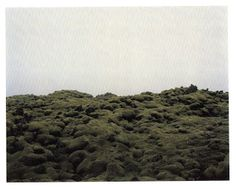 Elina Brotherus, Horizon 8