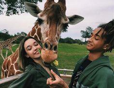 Si eres un amante de los animales y estás fuertemente comprometido con la conservación de la naturaleza, estos voluntariados están hechos para ti: África Ce