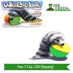 f30dcf4554e7c 34 Best Dog Toys images in 2018 | Dog Toys, Interactive toys, Medium ...