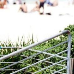 #bondi #beach #bondibeach #bondibeachsydney #skateboarding #skate #sydney #skatepark by ekstatik http://ift.tt/1KBxVYg