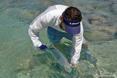 """Tiny """"Giant"""" Trevally took the Popper.  #flyfishing #loop #loop tackle #maldives http://www.aos.cc/travel-flyfishing/maldives/ Have a nice Sunday! AOS Fly Fishing Team"""
