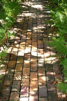brick paths, surrounded by ferns and willows.