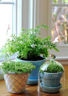 planta decoração interiores - Pesquisa Google