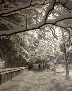 That wonderful snow night light