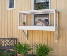 Its Easy to Build a DIY Catio for Your Cat! - Birman Cat - Ideas of Birman Cat - Its Easy to Build a DIY Catio for Your Cat! The post Its Easy to Build a DIY Catio for Your Cat! appeared first on Cat Gig. Diy Cat Enclosure, Outdoor Cat Enclosure, Cat Playground, Outdoor Cats, Cat House Outdoor, Outside Cat House, Outdoor Play, Outdoor Travel, Space Cat