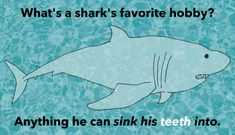 Sink Your Teeth Into These 33 Hysterical Shark Puns Shark Puns, Thought Catalog, Shark Week, Sharks, Make Me Smile, Teeth, Haha, Sink, Funny Memes