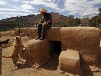 Lucky Dog Cbs Show Dog Quarantined