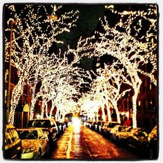 christmas in nyc.