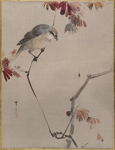Watanabe Seitei Bird on Branch Watching Spider Art Print by PDPress - X-Small Birds Painting, Poster Prints, Metropolitan Museum Of Art, Painting, Art, Fine Art Prints, Japan Art, Eastern Art, Bird On Branch