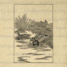 Printable Image Ducks Antique Graphic by VintageRetroAntique