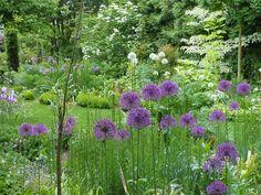 garten moorriem - bilder - besuchergarten und gärtnerei bei, Garten ideen
