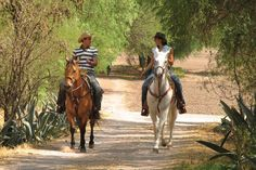 Horseback riding in Jalisco, Mexico looks like so much fun