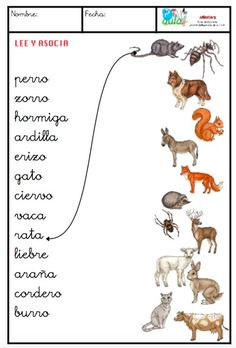 animales minúsculas Spanish Worksheets, Spanish Teaching Resources, Spanish Vocabulary, Spanish Language Learning, Teaching Tools, Spanish Teacher, Spanish Classroom, Speech Language Therapy, Speech Therapy Activities