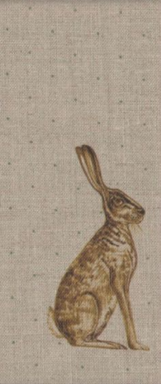Mister Hare on Flax, Peony and  Sage