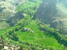 So much greenery. Afghanistan Landscape, The Province, Travel Photos, Places To See, Pakistan, Explore, Nature, Outdoor, Afghans
