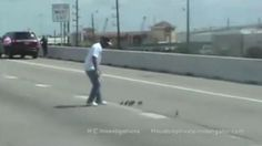Thank you to these awesome people who saved these little ducks!! Ducklings trying to cross freeway rescued - Houston, Texas
