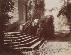This image from 1925 is the last picture Eugene Atget made at the Parc de Sceaux. It shows the staircase of the Pavillon de l'Aurore, an independent garden house used for entertaining that is one of the few buildings still standing from the 17th century.