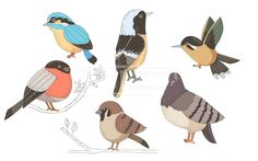 SPAI148, 프리진, 일러스트, SPAI148a, 동물, 에프지아이, 라인, 컬러풀, 컬러, 색채, 새, 나무, 나뭇잎, 비둘기, 참새, 벌새, 물총새, 딱새, 멋쟁이새, 일러스트, illust, illustration #유토이미지 #프리진 #utoimage #freegine 19952203