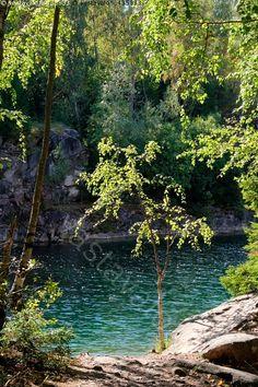 Koivu järven rannalla - järvi koivu ranta louhos tekojärvi makea vesi makeavetinen puu puut kimmeltää Ahvensaari Parainen Kilamon niemi järvimaisema