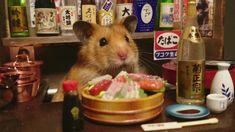 ハムスターの銀次 Hamster Ginji's Izakaya