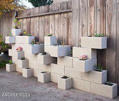 suculentas para tu jardín - Decoración de Interiores   Opendeco