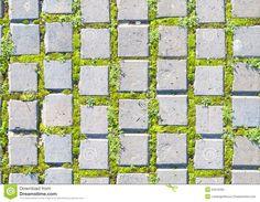 Kết quả hình ảnh cho top view grass AND STONE  texture