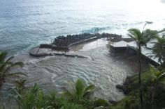 Pitcairn Island feels the effects of a tsunami on 9 August Water surges in a covers the wharf area. Pitcairn Islands, Tsunami, Feels, River, Outdoor, Outdoors, Tsunami Waves, Outdoor Games, The Great Outdoors