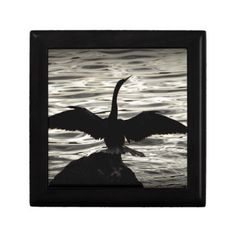 Choose from a variety of Shadow gift boxes on Zazzle. Our keepsake boxes are great places to hold valuables like jewelry. Wall Decals, Wall Art, Custom Gift Boxes, Wedding Programs, Keepsake Boxes, Poster Wall, Bald Eagle, Fine Art America, Wildlife