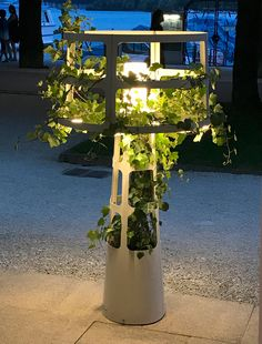 SOPHIE PLANTED - Designer General lighting from lasfera ✓ all information ✓ high-resolution images ✓ CADs ✓ catalogues ✓ contact information ✓. Wooden Planter Boxes, Grand Hotel, Outdoor Lighting, Terrarium, Lanterns, Indoor, Lights, Green, Plants