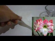 Como hacer la flor de amarilis en goma eva sin usar moldes paso a paso