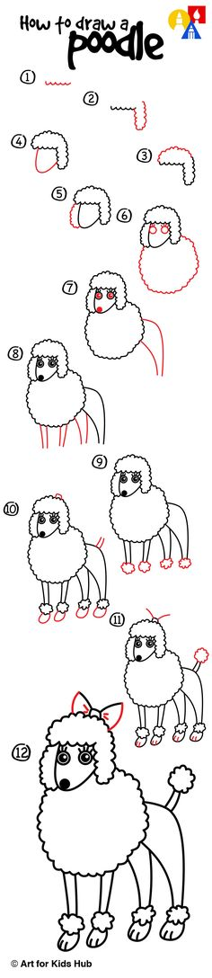 How To Draw A Poodle - Art For Kids Hub -