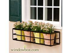 """60"""" Simple Elegance Window Box Cage (Square Design)"""