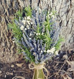 Rustic Romance Wedding Bouquet- Dried Lavender Bouquet, Fresh Rosemary Bouquet, Twine, Burlap, Lace