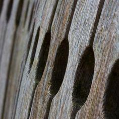 Bench by Tom McLaughlan
