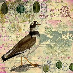 Collage by Carin Andersson