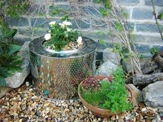One creative gardener has reused the cylinder from a broken washing machine as an attractive metal cachepot w/ a smaller pot inside. A very modern micro gardener!