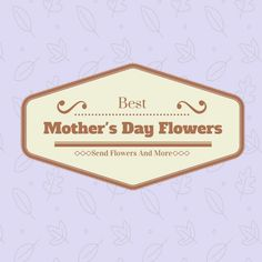 Mothers are one of the most special gifts one can have throughout their life time. so one need to some special gifts for her. Buy best mother's day flowers.