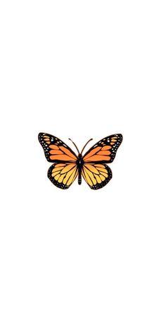 Iphone Wallpaper Vsco, Butterfly Wallpaper Iphone, Homescreen Wallpaper, Iphone Wallpaper Tumblr Aesthetic, Iphone Background Wallpaper, Aesthetic Pastel Wallpaper, Tumblr Wallpaper, Cartoon Wallpaper, Cool Wallpaper