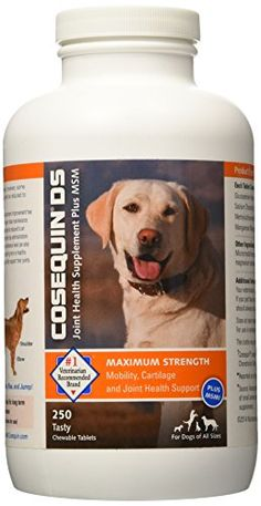 Nutramax Cosequin DS Plus with MSM Chewable Tablets - Vet recommended joint supplement brand - Comes with a delicious fish oil supplement that promotes a strong silky coat Joint Supplements For Dogs, Pet Supplements, Natural Supplements, Dog Pitbull, Dog Whistle, Dog Ages, Dog Store, Cosequin Ds, Dog Snacks