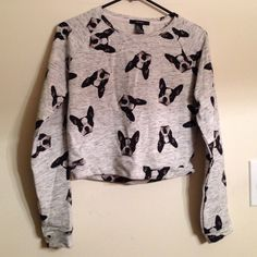 NWOT Boston Terrier sweatshirt! Reposh, sadly. It didn't fit me . Asking what I paid. Forever 21 Tops Sweatshirts & Hoodies