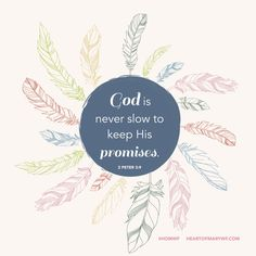 Download this week's #lockscreen & desktop screen saver. Up on the blog.  And remember, God is never slow to keep His promises!! #artfortheheart #HOMWF #download #wallpaper #feathers #secondpeter #bibleverse #scripture