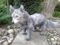 Puppy wolf - made by Dream Place Creations