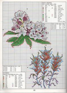 STATE FLOWERS  (bbj0077) West Virginia & Wyoming 1/1