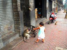 Lopburi, la ciudad de los monos #Tailandia Thailand Travel, Rompers, Cities