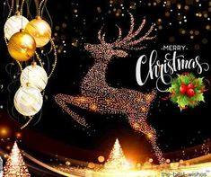 Looking for Merry Christmas pictures wish a Merry Christmas with these best Christmas wishes hd images, quotes, and greetings of Merry Christmas. Best Merry Christmas Wishes, Merry Christmas Pictures, Merry Xmas, Christmas Fun, Holiday, Merry Christmas Wallpaper, Halloween, Birthday, Daily Quotes