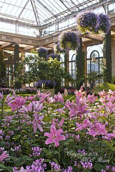 Longwood Gardens . Chadds Ford, Pennsylvania